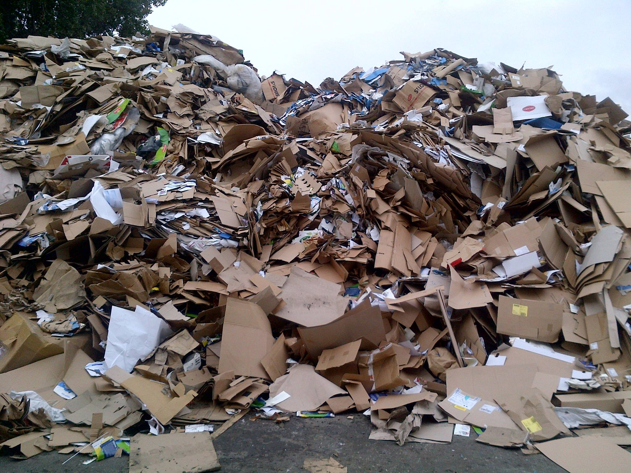 My star land general trading company l l c for Paper best out of waste